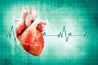 Hoe vaak slaat het menselijk hart in de loop van een jaar?