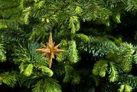 Kunstkerstbomen - kan als echte en geur te versieren
