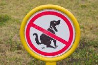 Het planten van de Hond Defence - zodat u voorkomen dat hondenpoep in voortuin