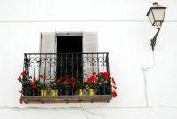 Balkon box van Eternit - op om te overwegen wanneer het planten