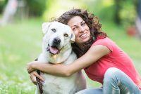 Hondenriem - Training voor een gehoorzame hond