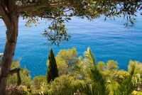 Mallorca in december - vakantie tips