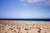 Coastal woestijnen - naam