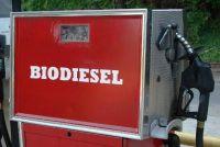 Biodiesel tanken - voor- en nadelen