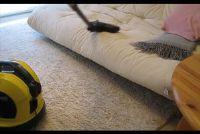 Vlooien in het huis effectief te bestrijden - eenvoudige huismiddeltjes
