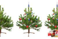 Maak versieringen voor de kerstboom zelf - suggesties