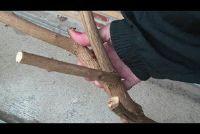 Maak zelf een wandelstok gemaakt van hout