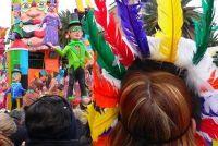 Carnival strooisel - dus kies de mix van de beste