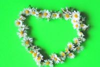 Keten binding van bloemen - hoe het heeft gedaan