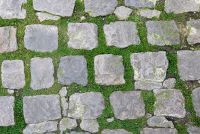 Verwijder gras tussen de stenen platen