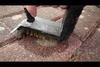 Verwijder korstmos op stenen - zo slaagt's