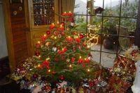 Als je de kerstboom in het water?