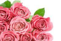 Op zondag bloemen kopen - dus het werkt
