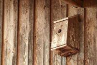 Building instructies - nestkast voor Robins
