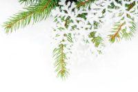 Maak Kerstmis brief voor klanten - en hier is feestelijk