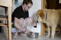 Hond komt niet als ik bel - dus uw hond leert op de oproep om te komen
