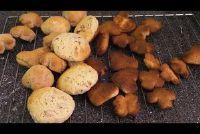 Een deeg, veel cookies - zo succesvol dat variaties