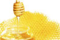 Biologische honing - bijen en imkers