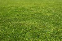 Verwijder oude gazon - hoe het werkt in de tuin