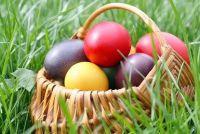 Hoe lang moet de eieren koken?