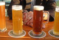 Spaanse bier - weten over streekbieren