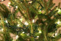 Speel het schrijven zelf - ideeën voor een kerst optocht