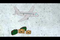 Case afmetingen op het vliegtuig - dat u moet zich bewust zijn