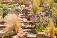 Rotstuin planten die winterhard zijn - zodat u de juiste schaduw