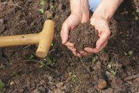 Meng gras aarde zelf