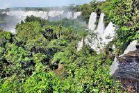 Ecofarming in de tropen - meer over hoe om uit te vinden