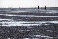 Deichbrand Cuxhaven - Herziening