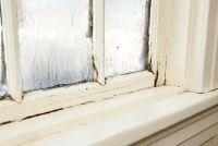 Schimmel op het raam zegel - wat te doen?