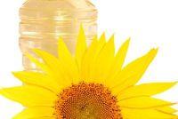 Gorgelen met zonnebloemolie - Wat u moet dit overwegen