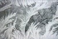 Ice Flower bij het raam - zo ontstaan de delicate structuur