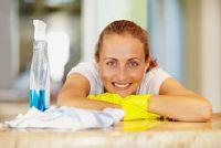 Huishoudster - training en inhoud