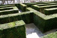 Labyrinth - om opnieuw uit te vinden truc