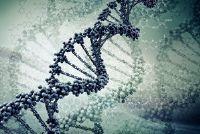 Isoleer hun eigen DNA - hoe het werkt met huismiddeltjes