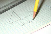 Hoe ziet u de oppervlakte van een driehoek te berekenen?