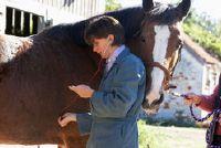 Flexie test bij paarden - Informatieve