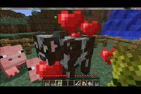Dieren gevangen in Minecraft - Hoe het werkt