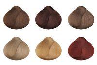 Kappers training - deskundigheid op haarkleur