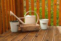Balkon planten in augustus - zodat u ze goed te onderhouden