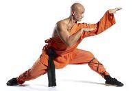 Wat is het verschil tussen karate en kung fu?