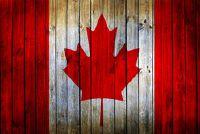 Canadese zanger - Voorbeelden