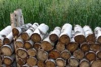Wood rookt zwaar bij verbranding - zodat je het te vermijden