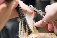 Hair cut - Beginner's Guide