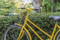 Bicycle schilderij - Instructies