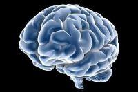 IQ-test online - uit te voeren voor gratis en zonder registratie