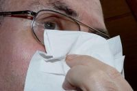 Cold Nose - wat te doen?