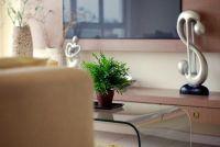 Verhoging van de vochtigheid in de kamers - nuttige tips